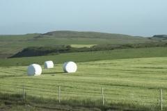 Covered hay bails in a field along Skeiða-og Hrunamannavegur, north of Flúðir, Iceland.