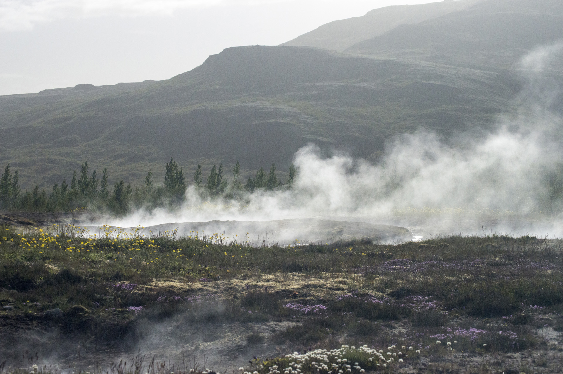 Steam rises from small geothermal pools in the Geysir Hot Spring Area in the Haukadalur Valley, Iceland.