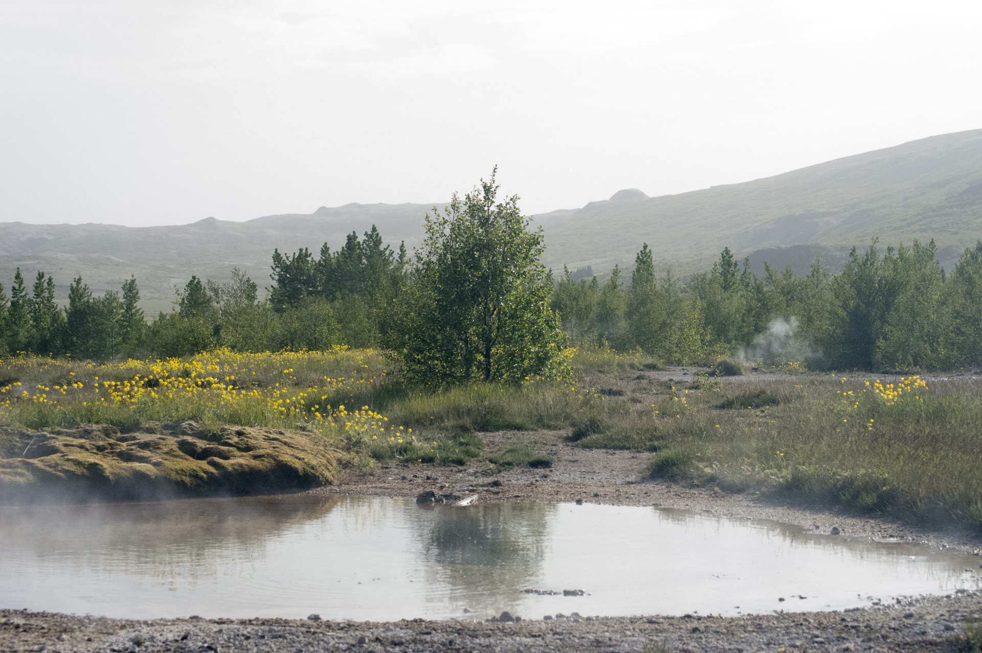 Geothermal pool in the Geysir Hot Spring Area in the Haukadalur Valley, Iceland.