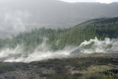 Geothermal pools and steam hut in the Geysir Hot Spring Area in the Haukadalur Valley, Iceland.