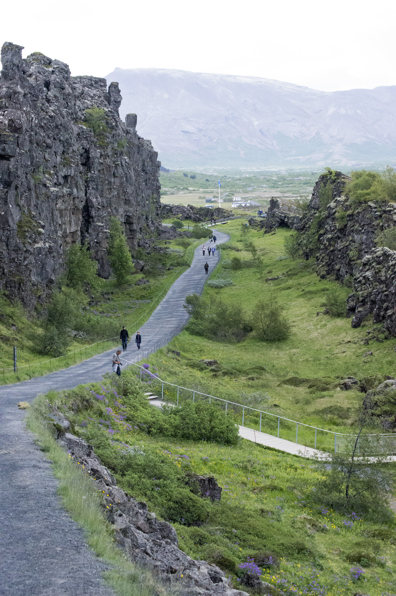 The rift valley along the Mid-Atlantic Ridge between the North American (left) and Eurasian tectonic plates, Þingvellir National Park, Suðurland region, Iceland.