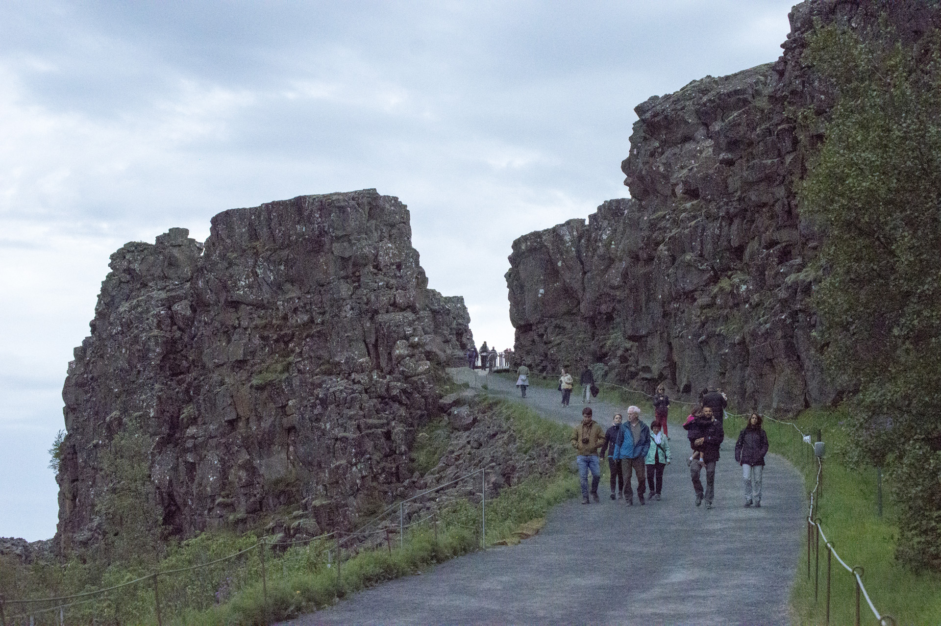 Rift valley along the Mid-Atlantic Ridge, Þingvellir National Park, Suðurland region, Iceland. North American plate is on the right.